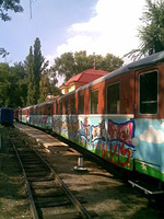 dp.uz.gov.ua: Дитячі залізниці у червні прийняли майже 25 тисяч відвідувачів