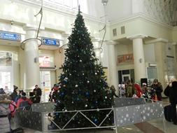 dp.uz.gov.ua: Пасажирів головного залізничного вокзалу Дніпра з 16 грудня зустрічатиме святкова ялинка