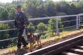 dp.uz.gov.ua: Воєнізована охорона Придніпровської магістралі за сім місяців присікла майже 290 злочинних посягань на вантажі та залізничне майно