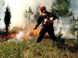 dp.uz.gov.ua: Придніпровські залізничники закликають громадян до обережного поводження з вогнем поблизу залізничних об'єктів