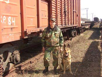 dp.uz.gov.ua: З початку року воєнізована охорона Придніпровської залізниці вберегла від розкрадачів залізничного майна та вантажів                                  на суму понад 2,1 млн гривень