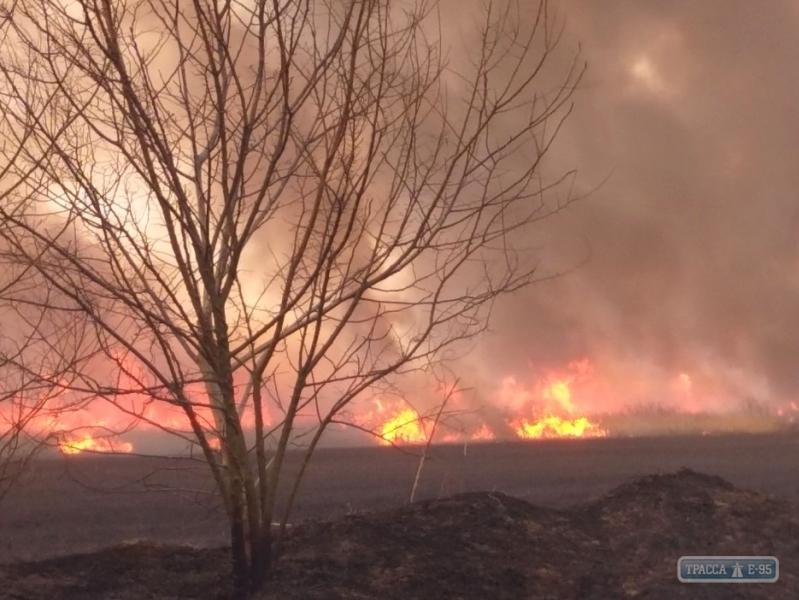 dp.uz.gov.ua: Придніпровська магістраль застерігає громадян від необережного поводження з вогнем поблизу смуг відведення залізничного транспорту