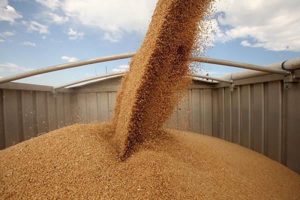 dp.uz.gov.ua: У липні придніпровські залізничники перевезли зерна нового врожаю на 16 % більше, ніж торік