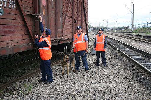 dp.uz.gov.ua: За перший тиждень нового року на Придніпровській залізниці запобігли 19 розкраданням майна та вантажів