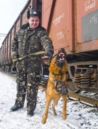 dp.uz.gov.ua: За тиждень воєнізована охорона Придніпровської залізниці попередила 19 спроб розкрадання вантажів, елементів інфраструктури та рухомого складу.