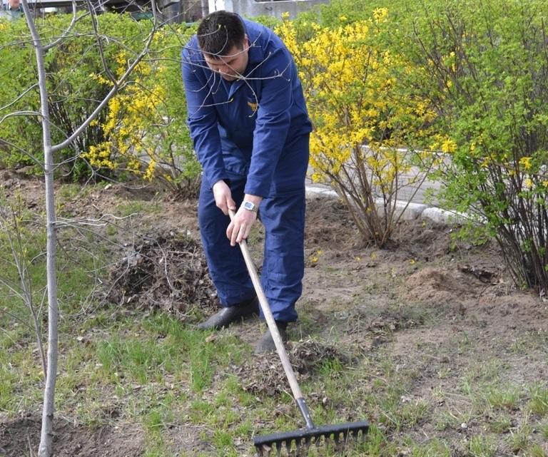 dp.uz.gov.ua: Майже 8,5 тис. придніпровських залізничників узяли участь                                у щорічній акції «За чисте довкілля»